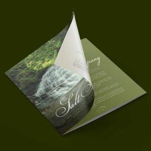 report design for Salt Springs Park brand
